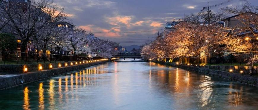 ▲圖片來源/羅晴提供    攝影/Yann Gerardi   京都每年收了多少台灣觀光客的現金啊?每年四月櫻花季臉書大約有一半的人都在京都撒錢。