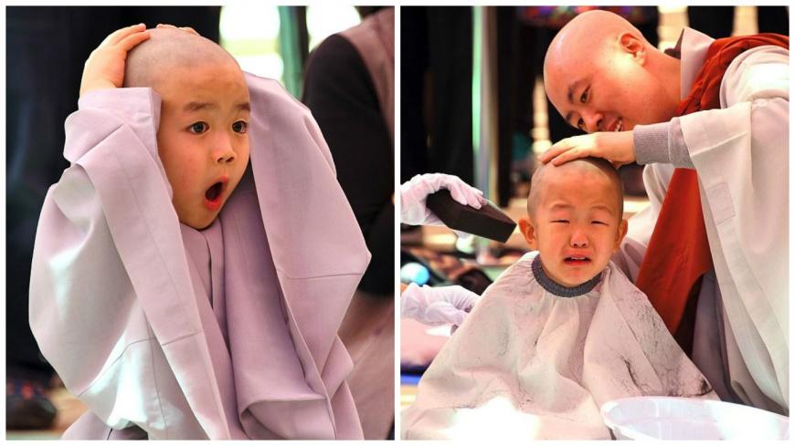 圖/《視覺中國》微博,下同 頭髮呢?驚訝、哭哭 韓國小和尚剃頭反應超萌