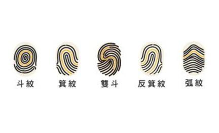 你人生最大的課題是?超準!從你的指紋告訴你!