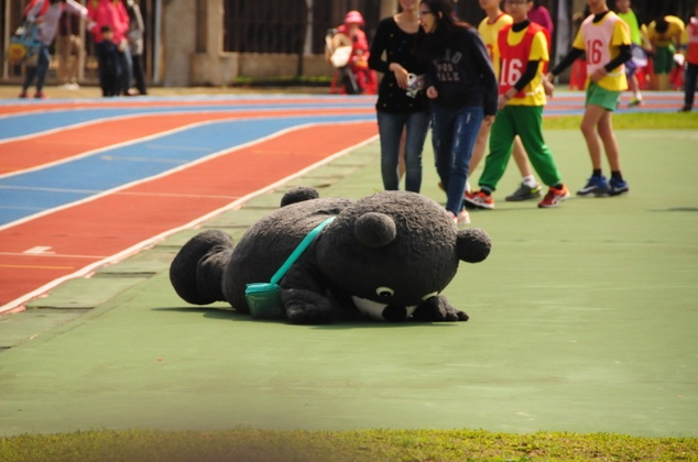 早期的熊讚容易跌倒/圖片來源:臺北市觀光傳播局
