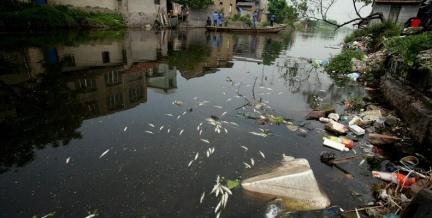浙江新二村河水受染料廠污染/圖片來源:綠色和平組織攝製