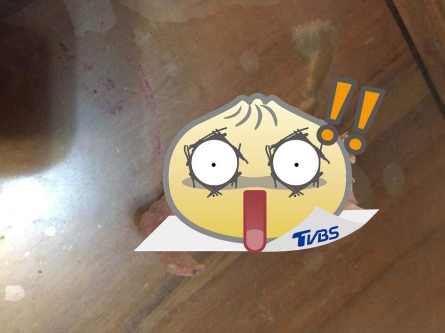 圖/爆廢公社 阿嬤的8萬元假牙 被汪汪當潔牙骨「嗑了」!
