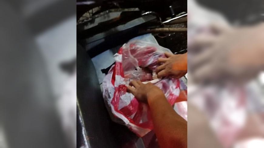 圖/翻攝自《每日郵報》 路邊塑膠袋傳怪聲!打開竟是臍帶未剪新生兒