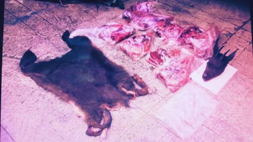 圖/翻攝畫面 保育類野山羊遭獵捕肢解 成冷凍肉塊餵狗