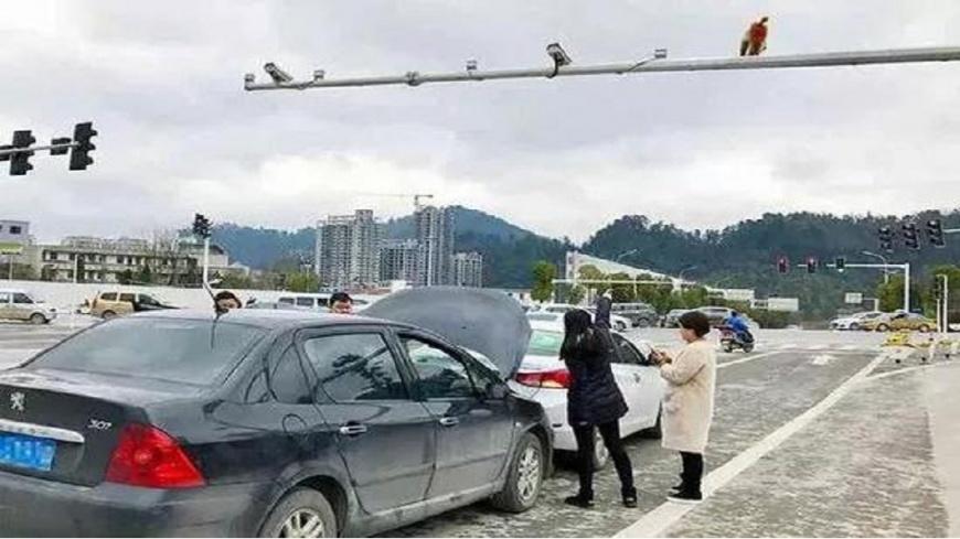 大陸貴州一名女駕駛誤把猴子屁股當成紅燈,突然緊急煞車遭到後方車輛撞上。(圖/翻攝自陸網) 把「猴屁股」誤認紅燈 女駕駛急煞車遭追撞
