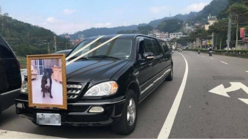 圖/爆料公社 是家人!養9年毛孩過世 飼主辦隆重葬禮告別