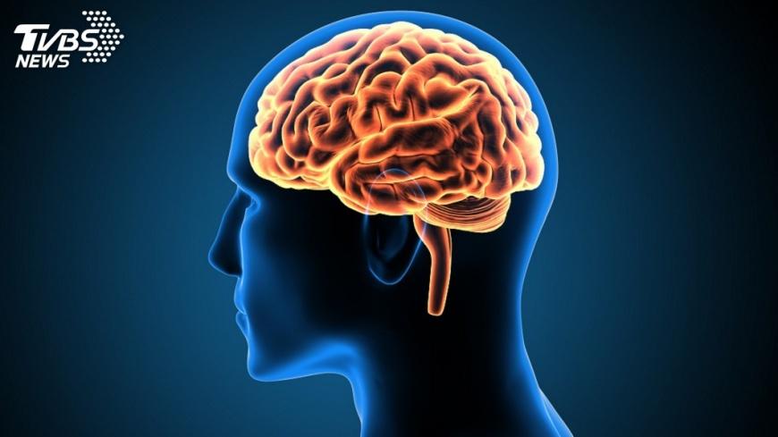 示意圖/TVBS 腦神經再生關鍵物質 國衛院團隊找到了