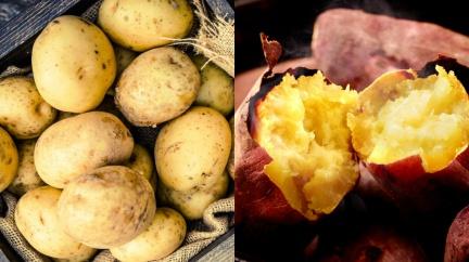 馬鈴薯V.S.地瓜,哪一個減重最有用?
