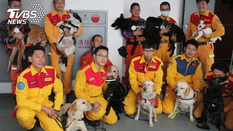 圖/TVBS資料照片 退役搜救犬去哪? 內政部近3年開放認養11隻