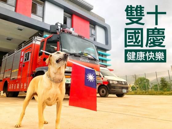 台東搜救犬「健康」。圖/翻攝自台東縣消防局