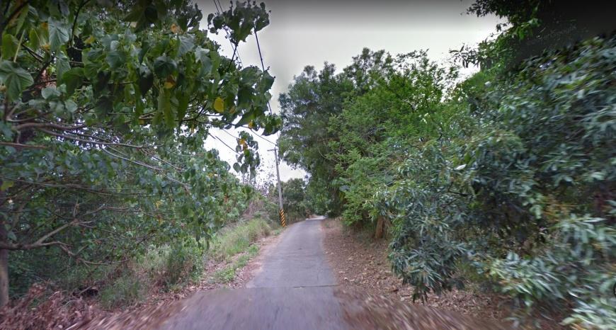上賞鷹平台前的小路。圖/翻攝自Google Map