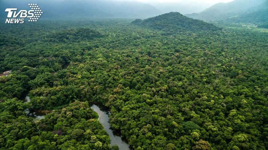 圖/TVBS 亞馬遜雨林大火釀危機 國際擬祭商業制裁