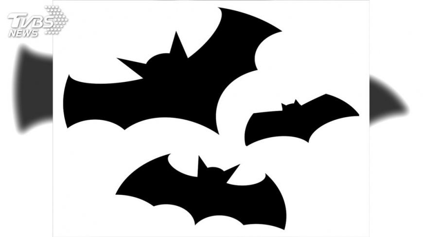 示意圖/TVBS 呼喚英雄!蝙蝠俠80周年 全球夜空齊照蝙蝠燈