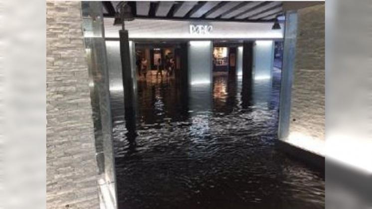 圖/翻攝自小早川SAN 微博 單日降下整月雨量 千葉多處淹水災情慘