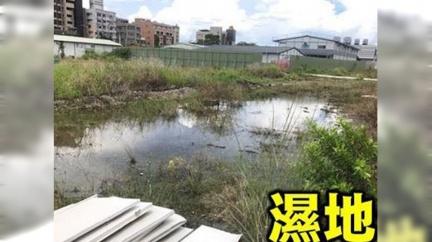 韓心血白費?鳳山車站淪孑孓溫床 網酸:登革市