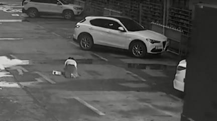 女邊走邊滑手機…突蹲路中央綁鞋帶 下秒慘遭貨車爆頭亡