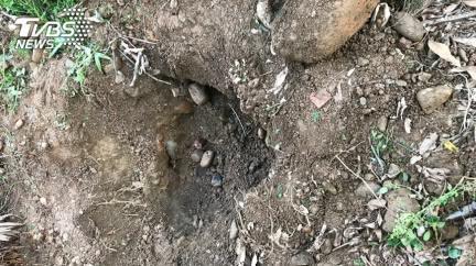 4歲女童埋屍雞寮旁 屋主驚:一點味道都沒有!