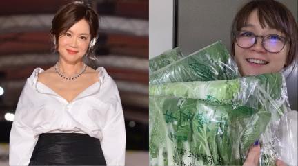 18年前閃嫁富商當豪門媳 高怡平親揭「引退關鍵」