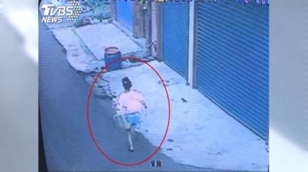利齒土狗「追90公尺」台南女童死巷中 飼主喊冤噴百萬