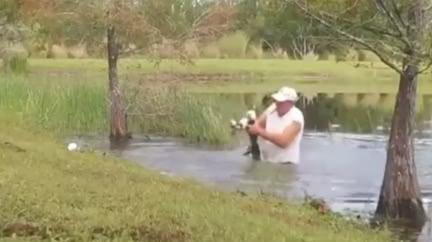 愛犬被拖河裡!勇伯暴衝「手撕鱷魚嘴」 路人全看傻