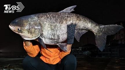 日月潭夜釣遭猛拉 男拽「42台斤巨獸」上岸:從沒遇過
