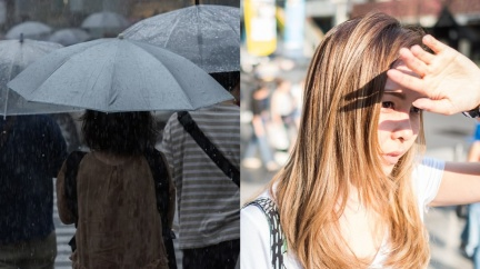 台北濕冷1個月快發霉 過來人揭「移居首選」:天氣超好