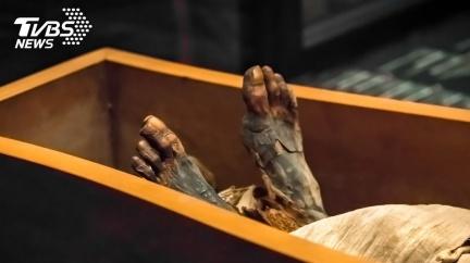 千年木乃伊生前遭餵活蝗蟲 「腹憋1.2kg屎」慘死
