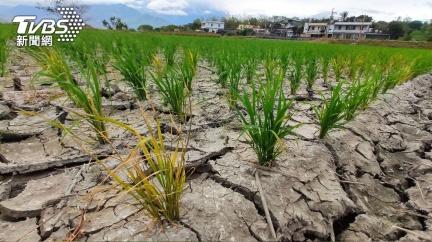 一張圖曝過去3個月降雨 鄭明典:乾旱就衝著台灣來