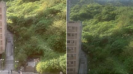 南港山區傳詭異「怪獸嘶吼」 居民嚇求解:聽過3次!