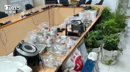租1.8萬套房當大麻農場 男子否認販賣撇無期重刑