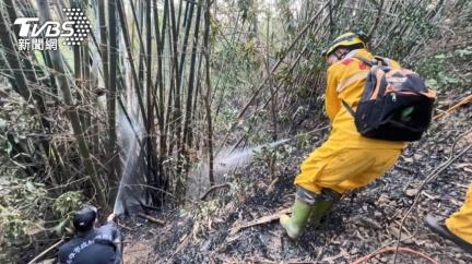 受不了!獼猴偷水果!屋主放沖天炮嚇猴 引山林火災