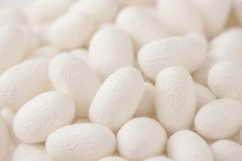 圖說:從蠶繭中提取的天然蠶絲蛋白成分,擁有高親膚性,易被肌膚吸收,能有效保濕。