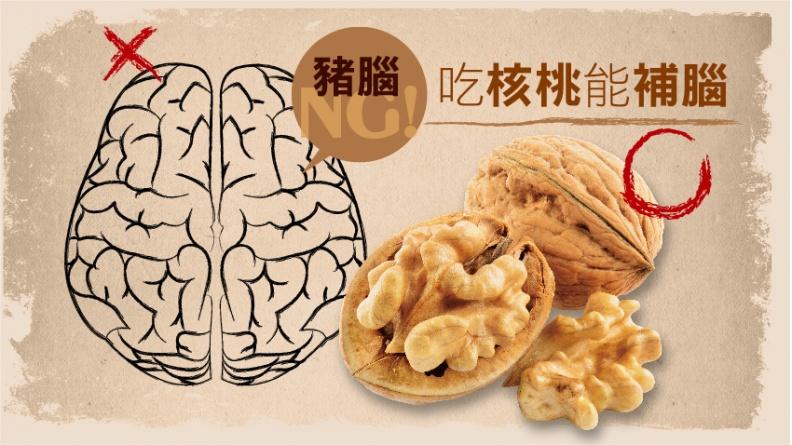 吃腦補腦、吃心補心……真有根據嗎?