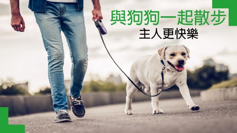 與寶貝狗狗一起散步 讓你更快樂!