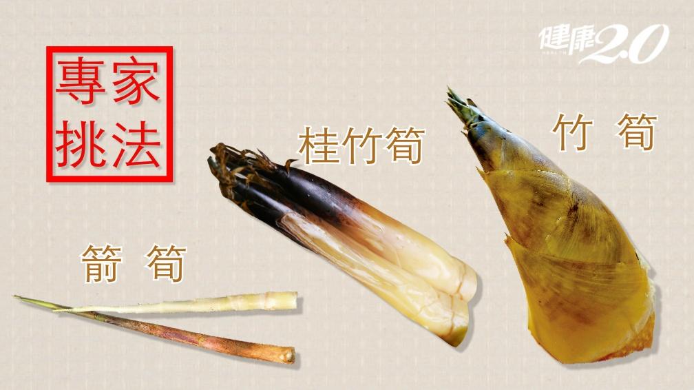 消暑又排毒!竹筍、箭筍、桂竹筍怎麼挑?怎麼煮最好吃?
