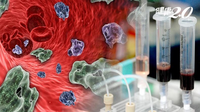 頭頸癌轉移惡化關鍵,中研院找到原因了,癌細胞竟會集體遷徙!