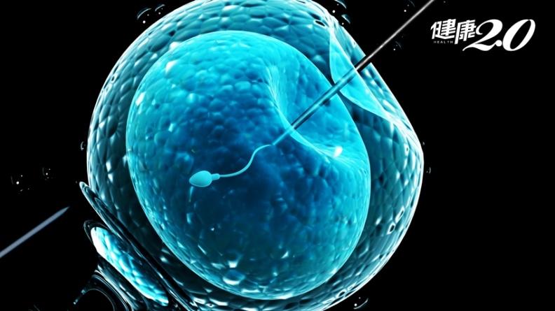 胚胎植入錯誤!難孕夫妻花百萬做試管嬰兒,孩子竟沒血緣關係