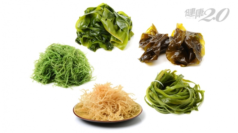 「零熱量」防癌食物!日醫大推海藻整腸助消化 強健好菌最佳食材
