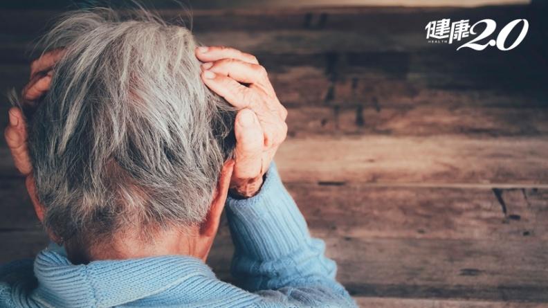 預防記憶減退!研究證實:補充益生菌可減緩老化