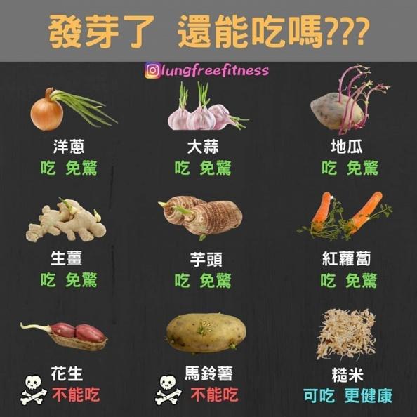 為何花生發芽更營養?營養師這樣說
