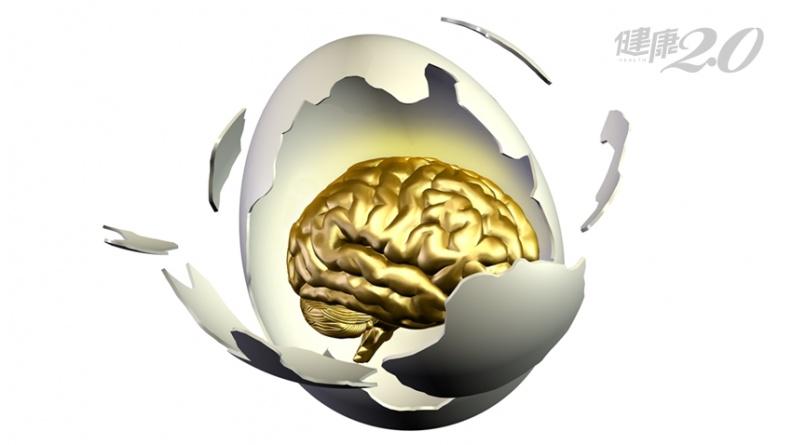「大腦寶藏」雞蛋!3大營養延緩腦血管病、預防記憶減退