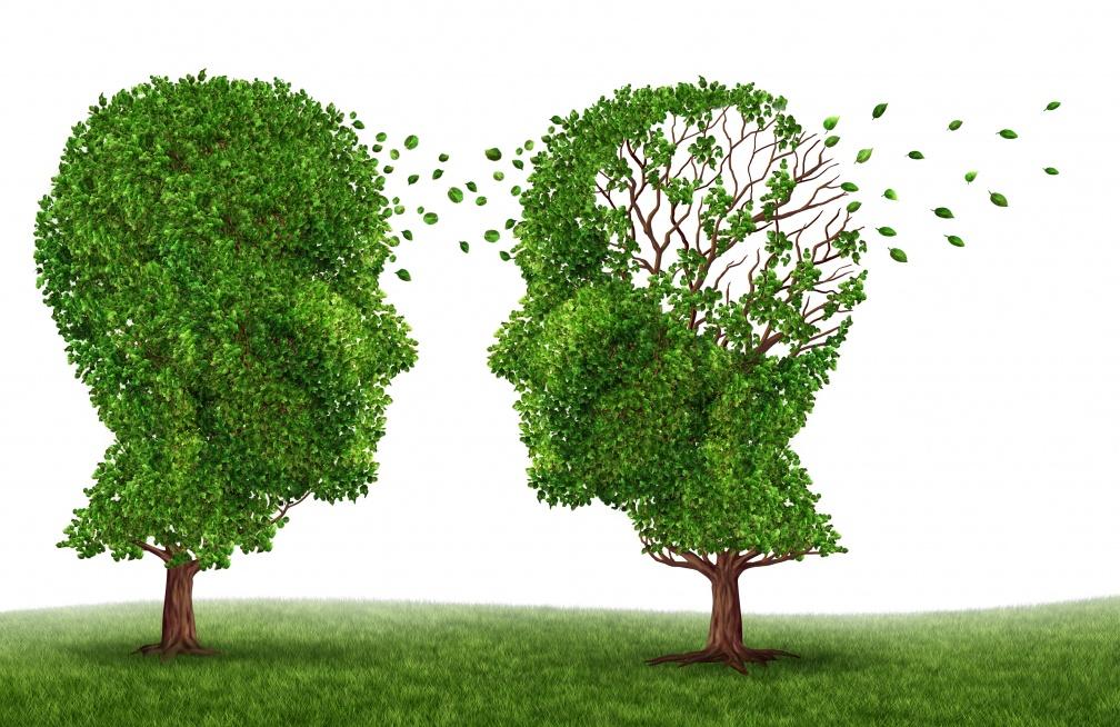 預防失智愈早開始愈好常按 4穴位+安神補腦茶 改善失智、延緩進程