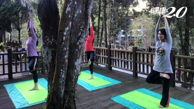 吸進滿滿芬多精!2招超紓壓「森林瑜伽」 活化免疫細胞、提升免疫力