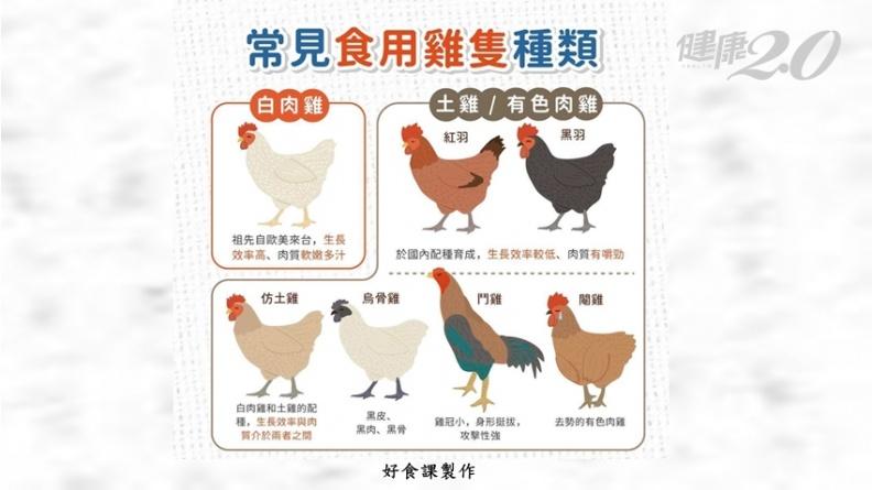 土雞、黑羽雞、白肉雞哪個比較營養?營養師激推CP值最高是「牠」
