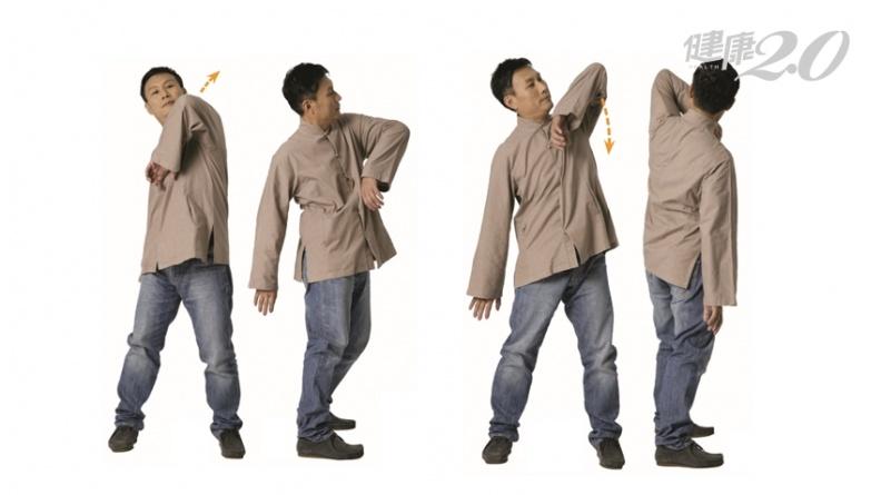 濕氣重也會傷腎!「熊戲」強健腎臟 排濕活血、預防衰老