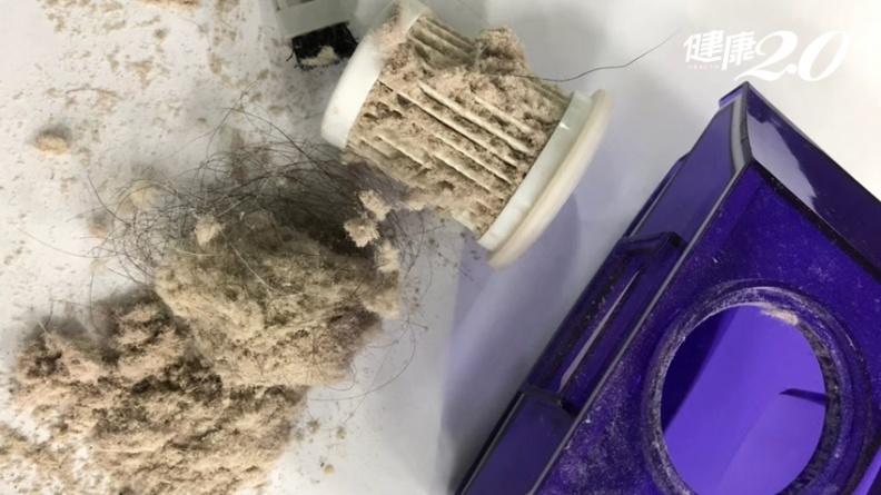 曬棉被殺塵蟎沒用!醫師教你5招殺死塵蟎 塵蟎卵、排泄物、屍體無殘留
