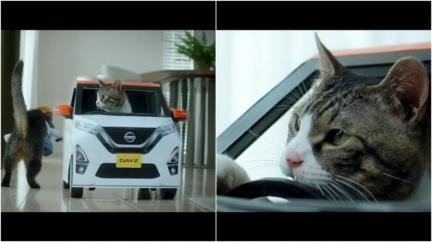 「貓咪」試駕Nyasan Dayz 駕駛員不斷跳出車外萌翻天