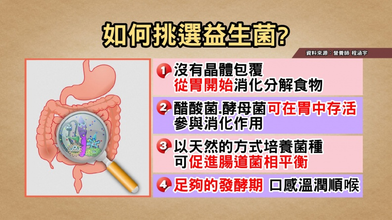 胃的分解要做好,腸道負擔才會少! 教你吃對新型態益生菌!