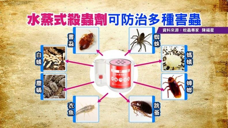 打掃要先除蟲 隱藏的蚊蟲用水蒸式殺蟲劑