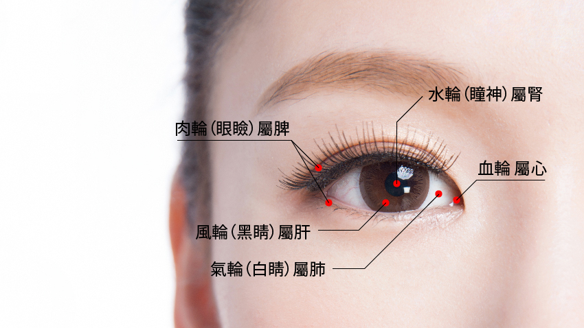 身體的求救訊號 中醫看一「眼」就知道